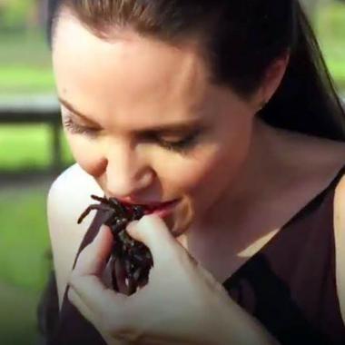 بالفيديو أنجيلينا جولي تأكل العناكب والصراصير مع أولادها في كمبوديا