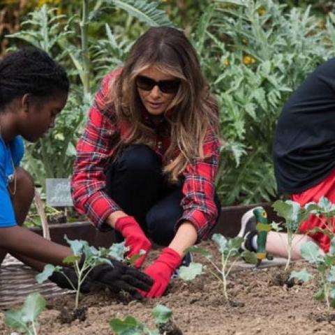 ميلانيا ترامب في بستان ميشيل أوباما