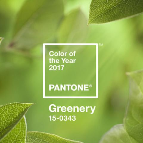 Greenery لون العام 2017