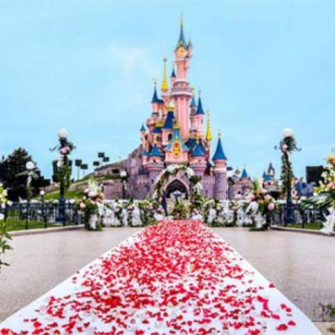 حلم الزواج في ديزني لاند باربس يتحقق في الربيع!