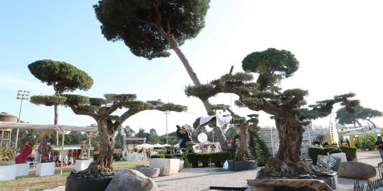 معرض الحدائق ومهرجان الربيع يختتم نسخته الخامسة عشرة بنجاح