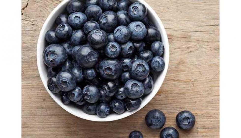 أفضل 5 أطعمة مفيدة للثدي