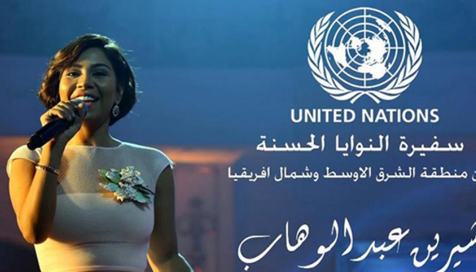 الأمم المتحدة تكذّب شيرين والأخيرة تردّ