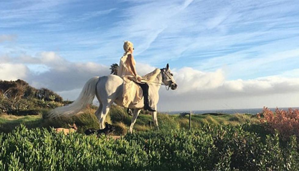 """حصان أبيض هدية ليدي غاغا في """"الميلاد"""""""